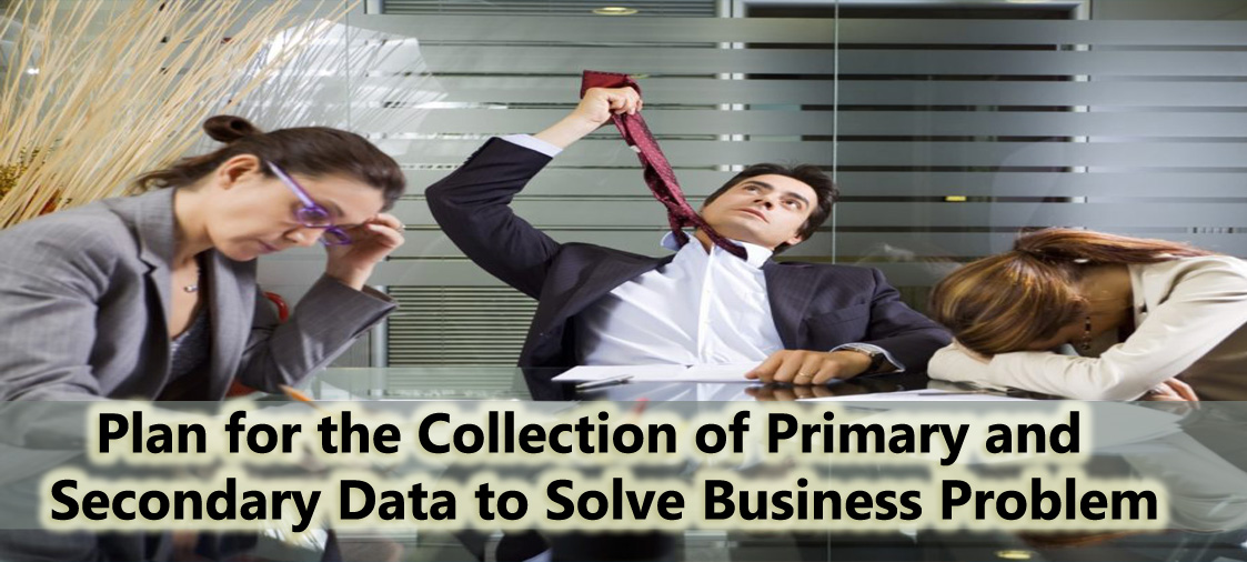 Plan primary and secondary data collection techniqueto solve business problems