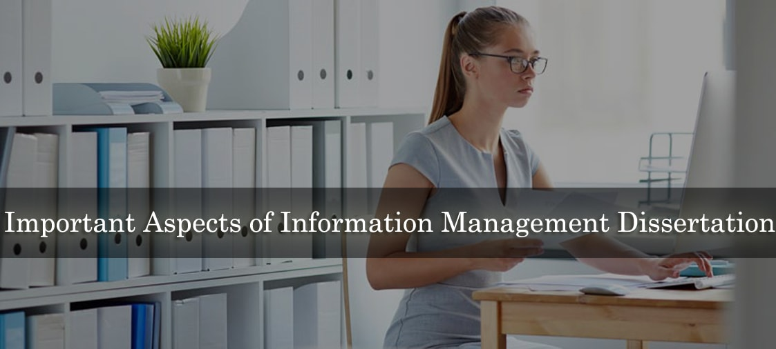 Important Aspects of Information Management Dissertation